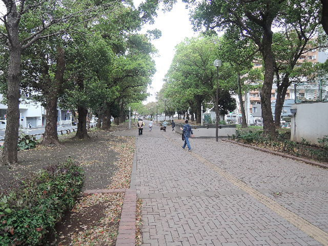 咲良[周辺施設]公園