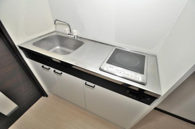 レジデンスやまびこ 洗面台がないのでキッチンと一緒です。
