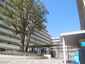 シティコート目黒 4号棟の外観画像