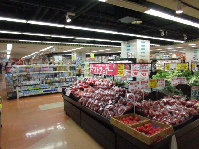 ソラーナ[周辺施設]スーパー