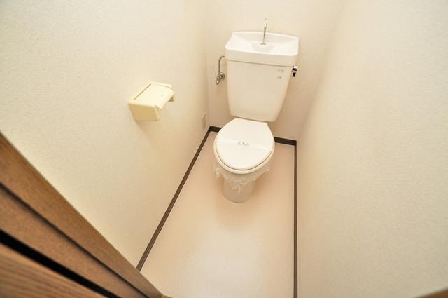 グランシャトレー DAIWA キレイに清掃されたトイレは清潔感がり気分もよくなります。