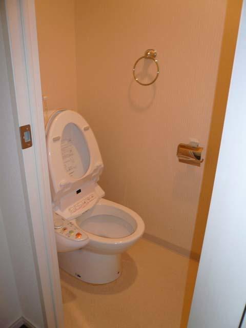 デュオ・スカーラ麹町トイレ