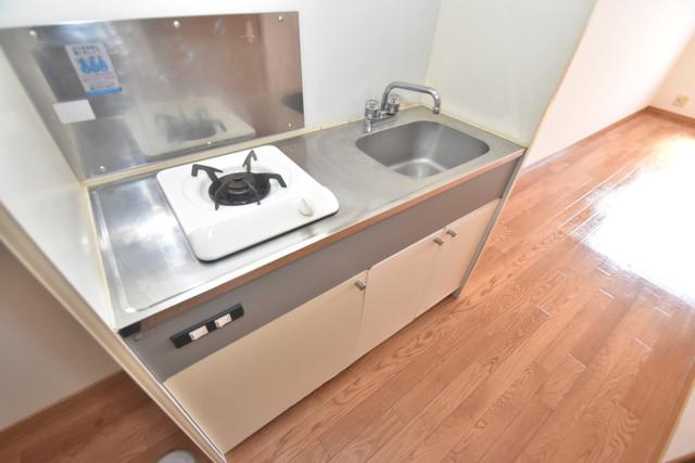 エステートピアナカタA棟 単身用のカワイイミニキッチンです。