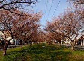 江北北部緑道公園