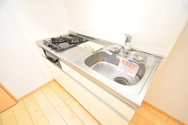 ディオーネ・ジエータ・長堂 システムキッチンなので広々使えて、お料理もはかどります。