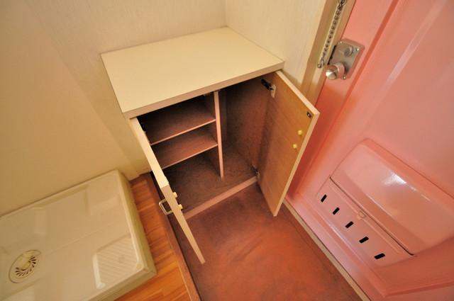 ハイツせせらぎ ゆったりとした玄関。もちろんシューズボックスもあります。