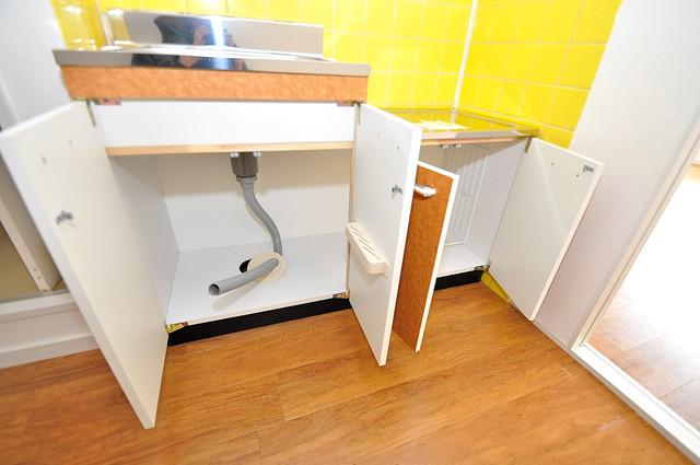 大宝菱屋西ロイヤルハイツ キッチン下スペース収納も充実しています。