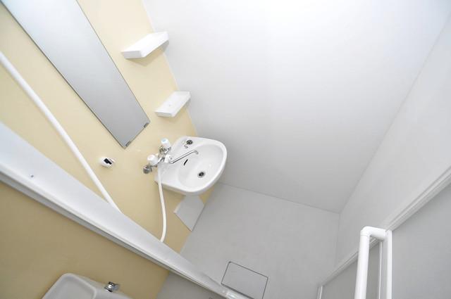 メゾンドールコトブキⅡ シャワールームになります。