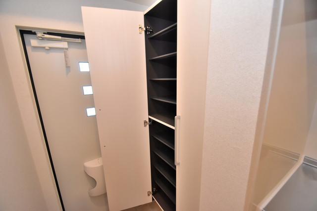 リジエールⅡ 明るい玄関には大きめのシューズボックスがありますよ。