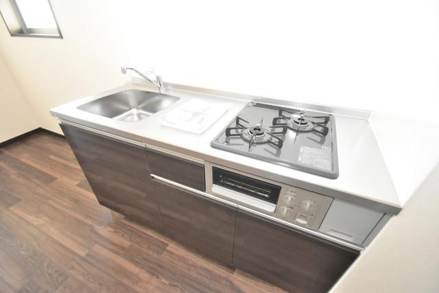 ラージヒル長瀬EAST 落ち着いた色合いのキッチン。使い勝手も良いです。
