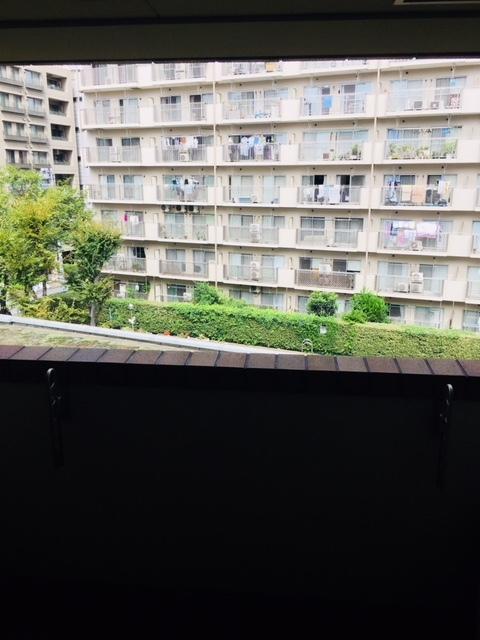 アトラス江戸川アパートメント景色