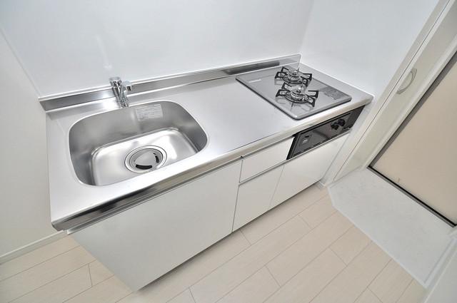 K' ヴィラ(ケーズ ヴィラ) システムキッチンなので広々使えて、お料理もはかどります。
