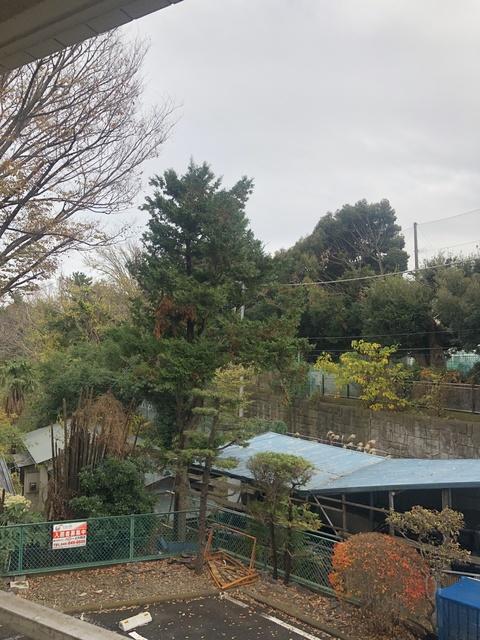 楓マンション景色