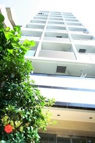 エフシティ亀戸の外観画像