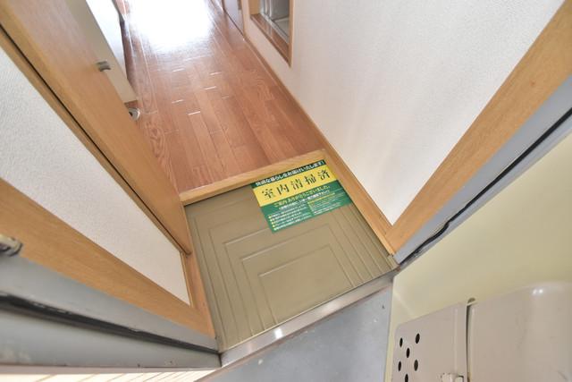 エステートピアナカタA棟 素敵な玄関は毎朝あなたを元気に送りだしてくれますよ。