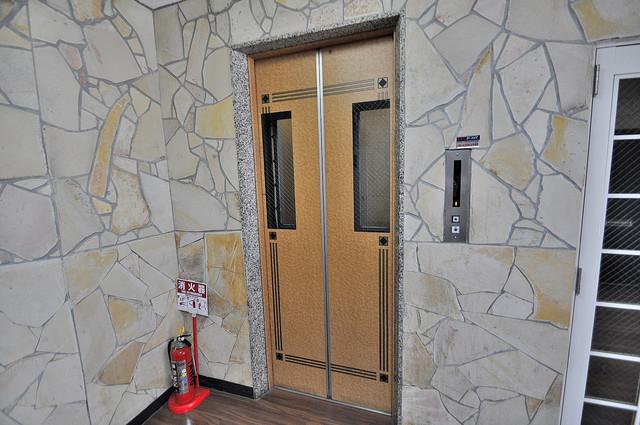 エレベーターホールもオシャレで、綺麗に片づけられています。