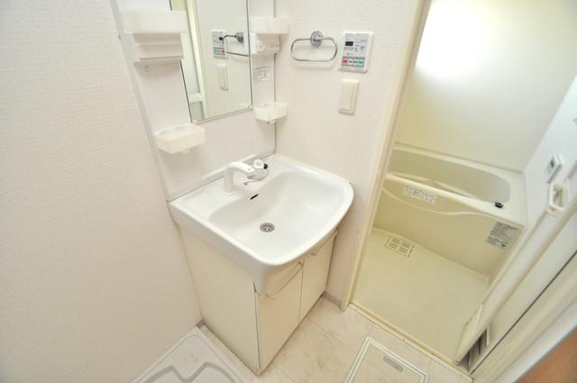 アミティタワー 人気の独立洗面所にはうれしいシャンプードレッサー完備です。