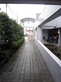 武蔵溝ノ口駅 徒歩31分植栽