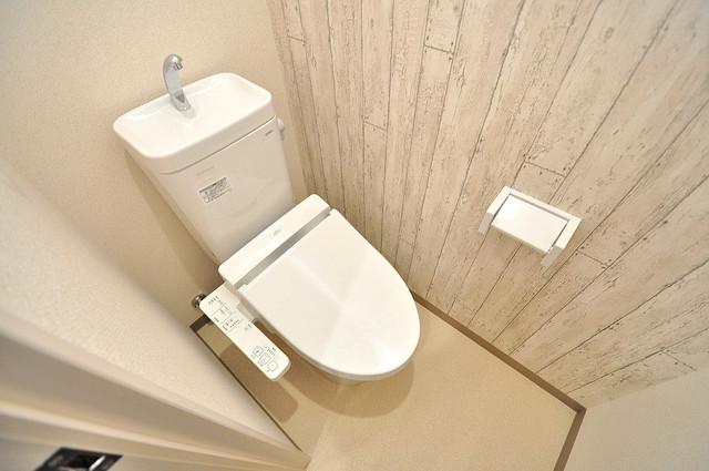 フジパレス高井田西Ⅰ番館 スタンダードなトイレは清潔感があって、リラックス出来ます。