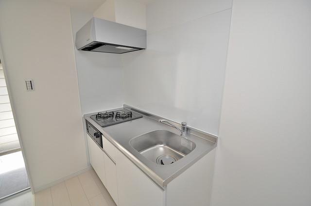 cocotii(ココティ) お料理好きにはうれしい設備。豪華なシステムキッチンですよ。