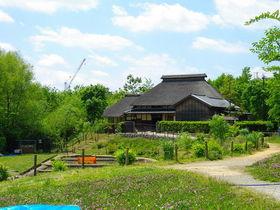 区立赤羽自然観察公園