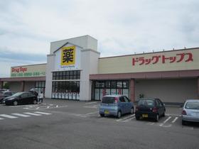 https://image.rentersnet.jp/c5da19fb96180b395d5127dcec0b2388_property_picture_954_large.jpg_cap_ドラッグ・トップス新津店