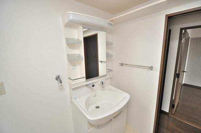パレグリシーヌ 人気の独立洗面所はゆったりと余裕のある広さです。