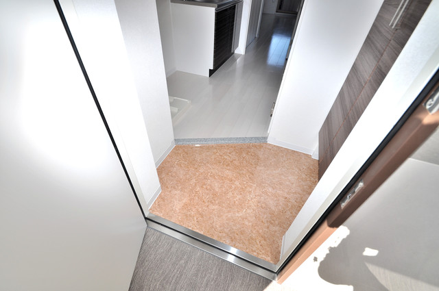 Luxe今里Ⅱ 素敵な玄関は毎朝あなたを元気に送りだしてくれますよ。