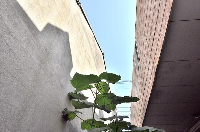 レオパレス布施  目の前に建物がありますがこのように日も入ってきます。