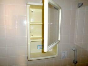 浴室内にある洗面キャビネット
