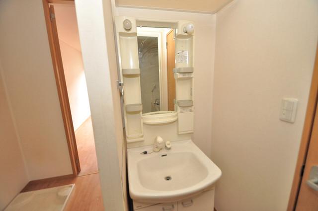 エントピア西堤C 豪華な洗面台はもちろんシャンプードレッサー完備です。