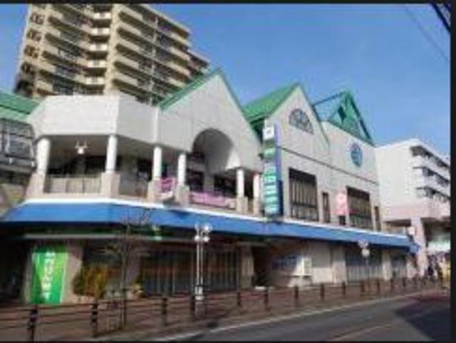 フレンドポート相模大野Ⅱ[周辺施設]ショッピングセンター