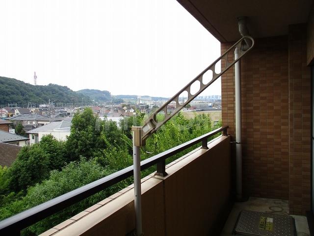 フレグランス稲田堤景色