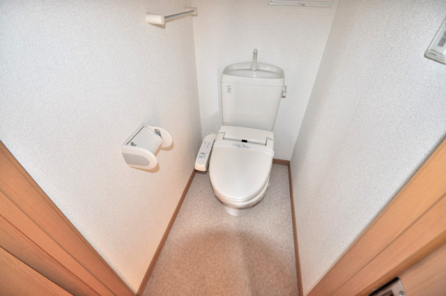 メゾン・みのうら 清潔感たっぷりのトイレです。入るとホッとする、そんな空間。