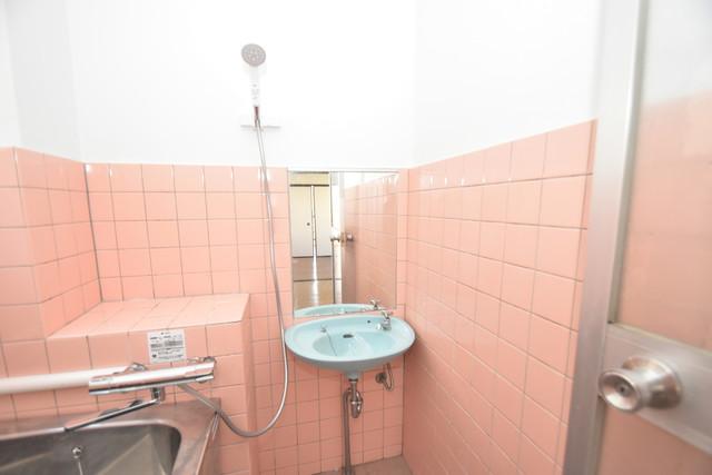 セイワパレス寺山公園 小さいですが洗面台ありますよ
