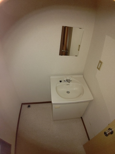 メゾンドール洗面所