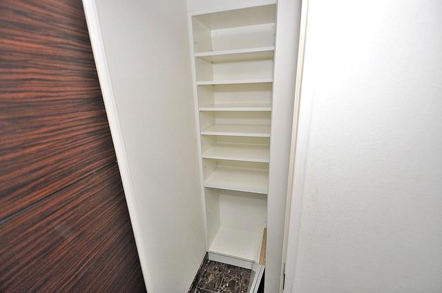 セレッソコート八戸ノ里ハートランドイーストビュー 各所に収納があるので、お部屋がすっきり片付きますね。