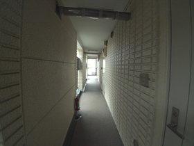 いつも綺麗な共用廊下