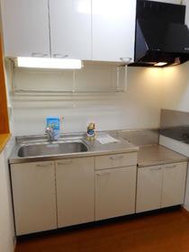 https://image.rentersnet.jp/d85175f9-9a7e-486e-94e1-4a86edcfc77b_property_picture_3520_large.jpg_cap_キッチン