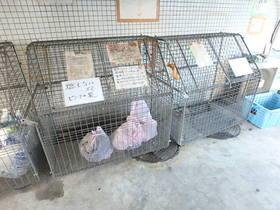 メゾンドノア聖蹟桜ヶ丘共用設備