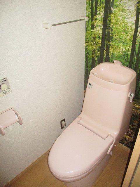 クレマチスの丘Ⅱトイレ