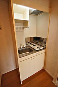 ダイナコートエスタディオミューズ : 6階キッチン