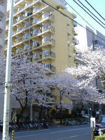 東京ベイビュウの外観画像