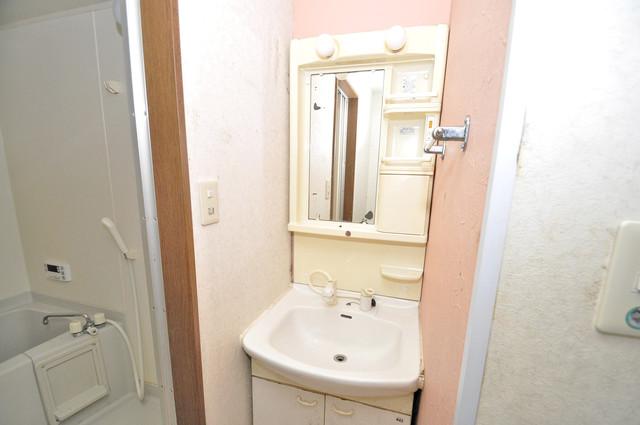 カトル・セゾン 人気の独立洗面所にはうれしいシャンプードレッサー完備です。