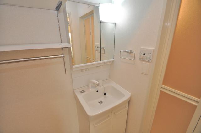 プロシード巽 豪華な洗面台はもちろんシャンプードレッサー完備です。