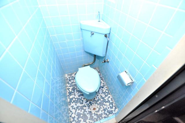 ロイヤルハイツ八戸ノ里 清潔感のある爽やかなトイレ。誰もがリラックスできる空間です。