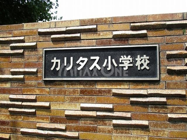 アートフル中野島[周辺施設]小学校