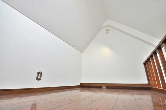 メロディーハイム小阪 ロフトがついてますので1部屋分お得に使えますよ。