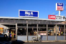 ビッグ・エー東大和芝中団地店
