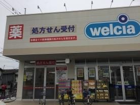 パレグリシーヌ ウエルシア東大阪森河内東店